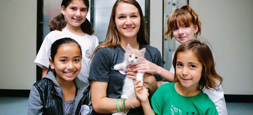 group of kids and a teacher posing with cute kitten