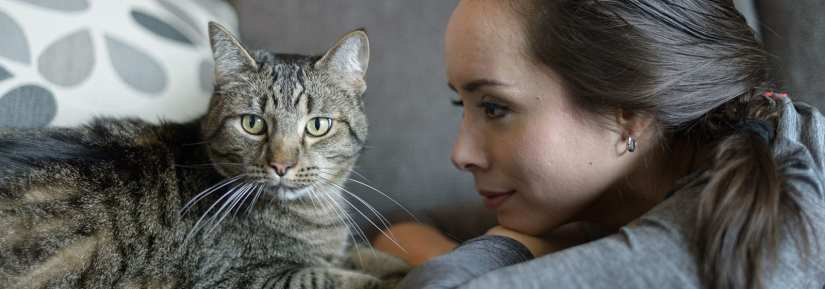 Woman looking at tabby cat lying on the couch while cat looks to the side