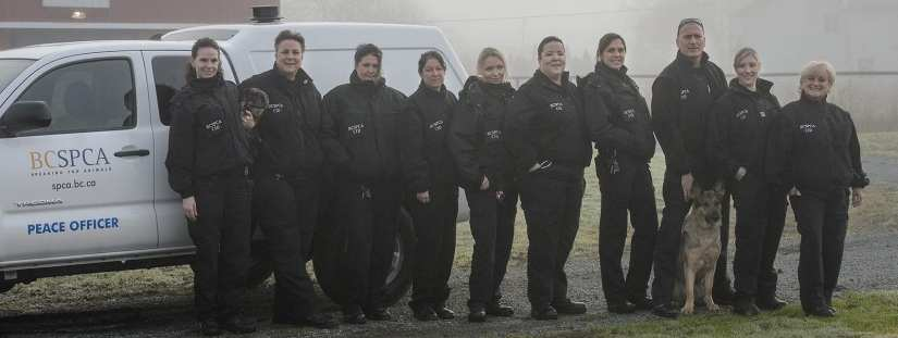 Cruelty investigative Department staff in uniform group shot with a dog in front of BC SPCA truck