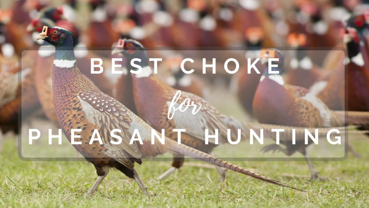 best choke for pheasant hunting
