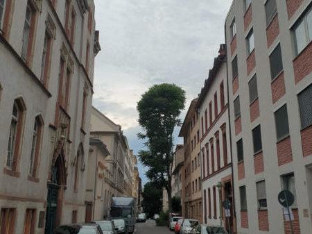 Schutz für Mieterinnen und Mieter:  Milieuschutzsatzungen für die Altstadt