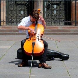 musician, chello, bow-2412990.jpg