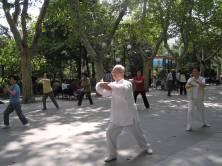 Shanghai _ tai chi in park