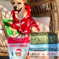 12 Books of Christmas
