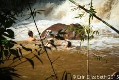 Washing elephants in waterfalls, Mondulkiri