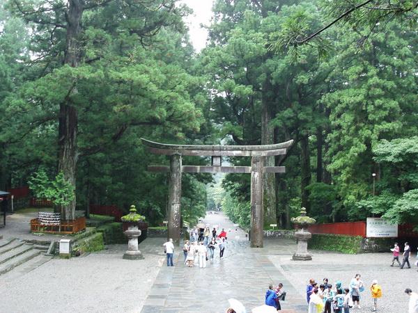 Vägen upp till Toshogu Shrine kantades av pampiga cederträd och cypresser.