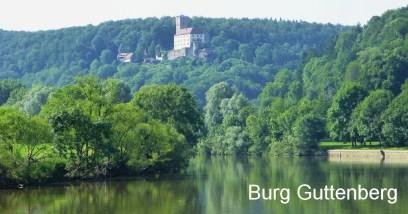 Utflykt till Burg Guttenberg för en uppvisning av rovfåglar