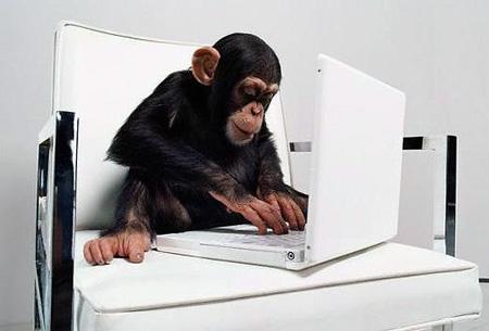 computer-monkey
