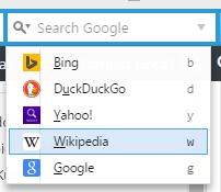 SlowPrzeg_searchfield