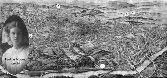 MAP208