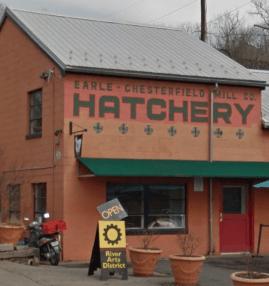 hatchery studios