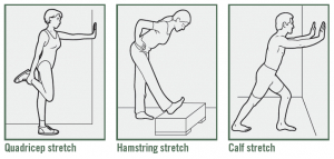 Spring Fitness, stretching