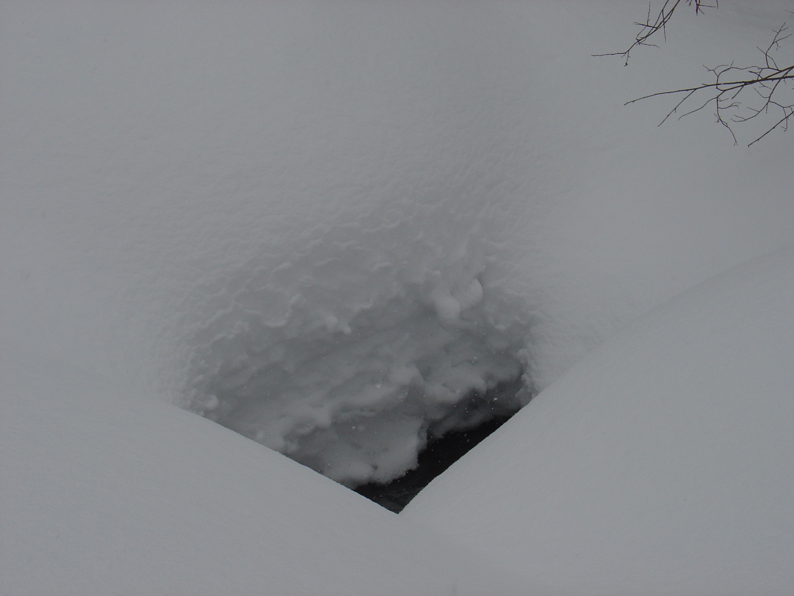 This is a hole in the snow over a little creek--see how much snow they have!?!?