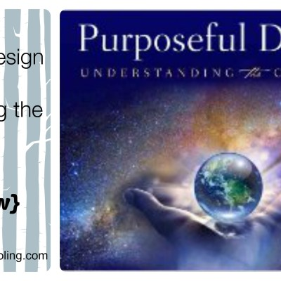 Purposeful Design: Understanding the Creation {review}