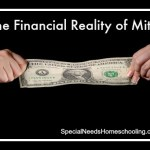 The Financial Reality of Mito