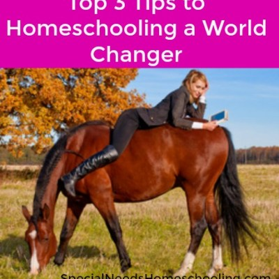 Top 3 Tips to Homeschooling a World Changer