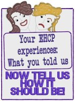 What you told us about your EHCP experiences. Now tell us how it should be!