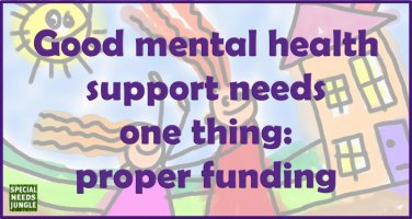 Good mental health support needs one thing: proper funding