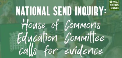 National SEND Inquiry: House of Commons  Education Committee  calls for evidence
