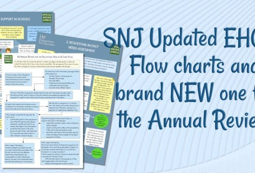 Updated EHCP Flow charts and a brand new one for the Annual Review!