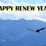 Happy Renew Year