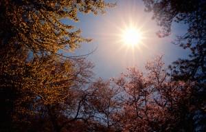 sunrise easter