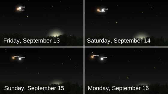 The positions of Venus and Mercury in the post-sunset sky over the next few days.