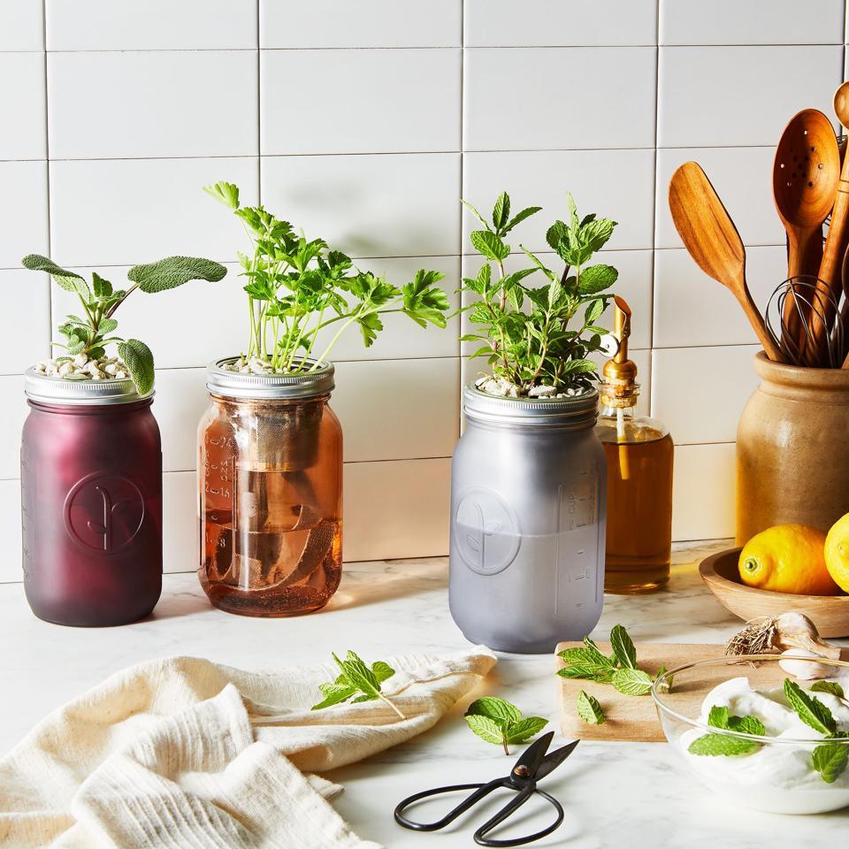 14 Easy Indoor Herb Garden Kits Plus Expert Tips For Growing Success
