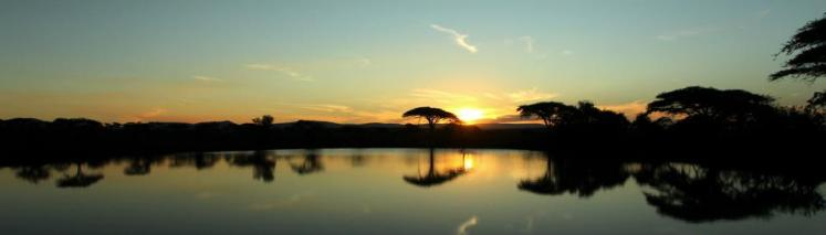 Sunset at Thanda Safari, South Africa