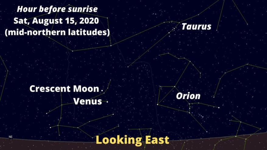 Mire hacia el este antes del amanecer del sábado 15 de agosto de 2020 para ver una conjunción de una Luna creciente y Venus, y Orión a la derecha.