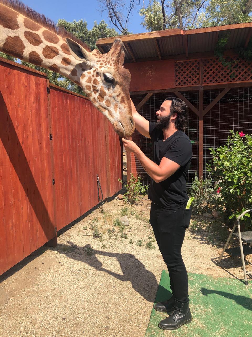 Travis rehabilitating animals