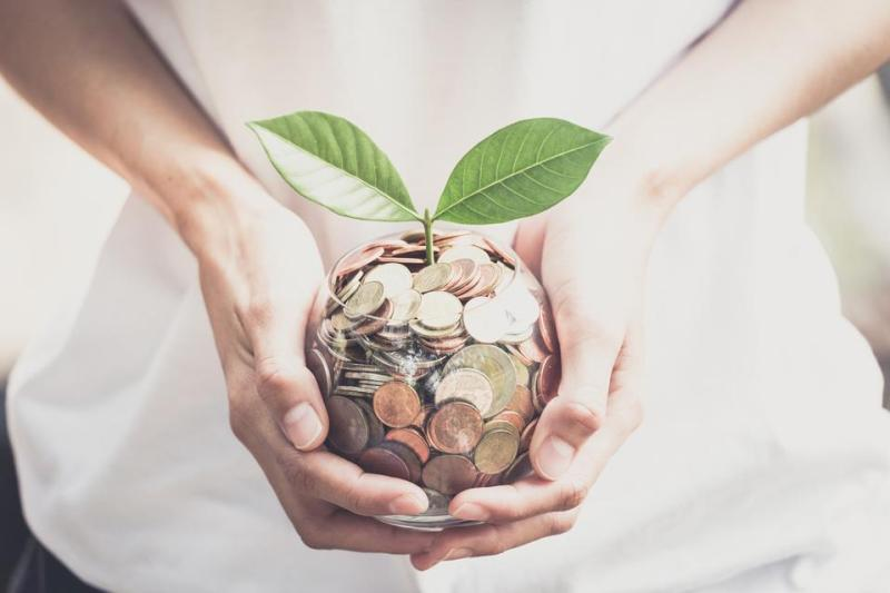 Person holding money with plant