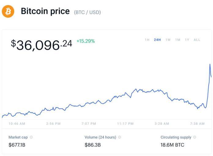 bitcoin, bitcoin price, Elon Musk, chart