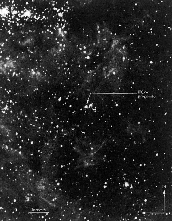 progenitor supernova