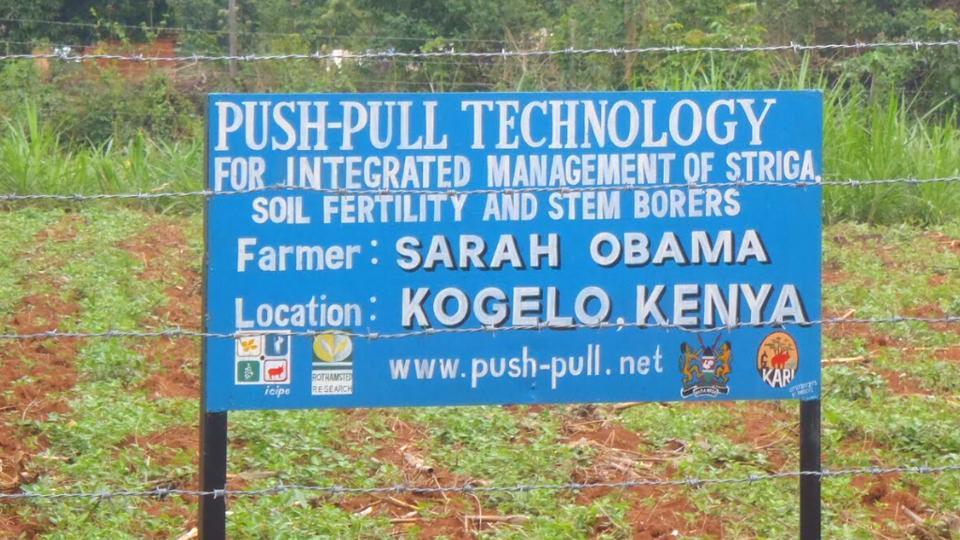 push-pull farming