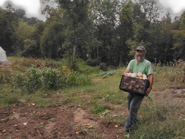 2016 csa fall nov 19 mike harvests