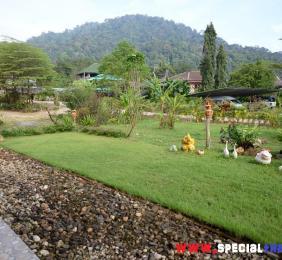 Visiter Khao Sok, parc naturel 2