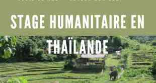 Stage Humanitaire en Thaïlande