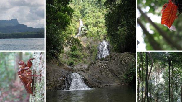 Khao Phanom Bencha National Park à Krabi