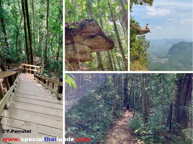 Treck à Krabi