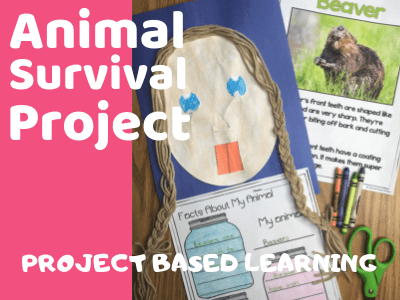 Animal Survival Project