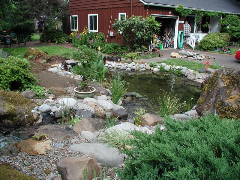 Specialty Ponds NW - PHOTO GALLERY on Front Yard Pond  id=57345
