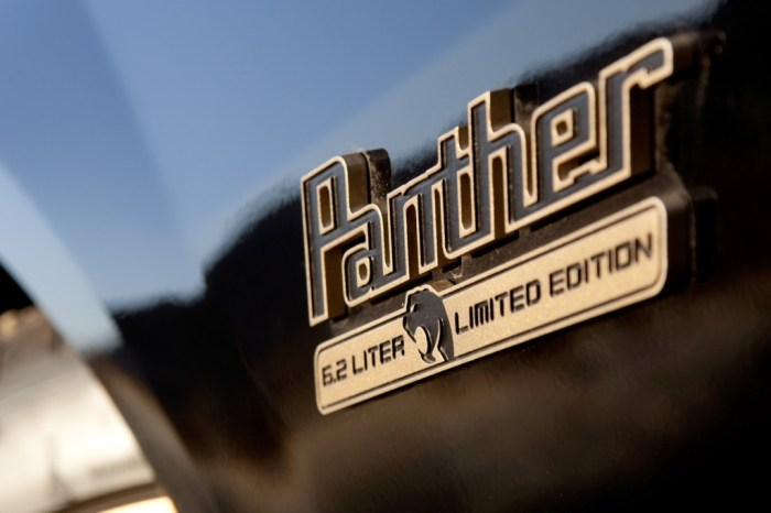Panther Gallery Pic 22