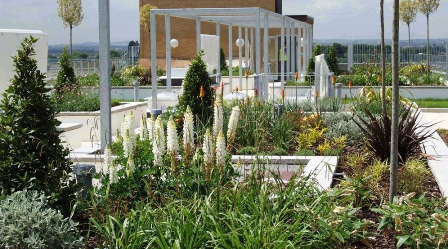 Waterproof roofing specialist, Kemper System, unveils KEMPERGRO a complete green roof system.