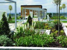 Key considerations for green roof specification