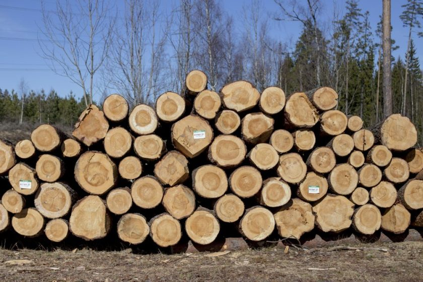 Where does our timber come from?