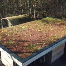 Sedum Roof Staffordshire