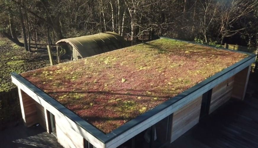 Green roofs store rainwater in the plants and growing medium.