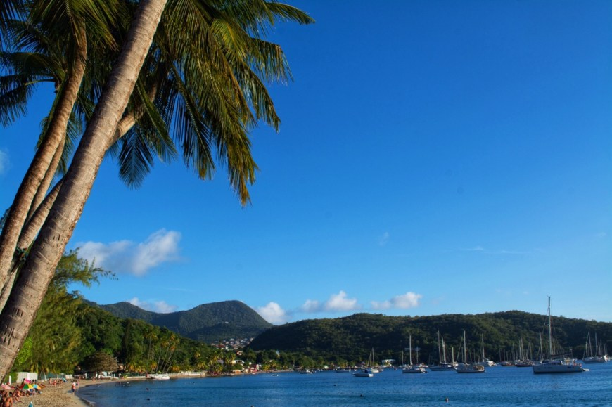 Sustainable Martinique Guide