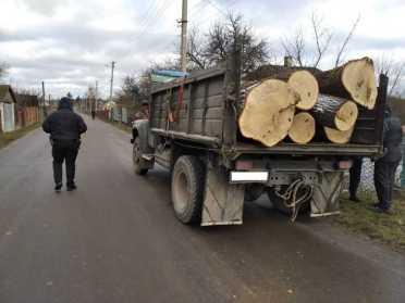 На Костопільщині поліція та лісівники затримали крадія дуба